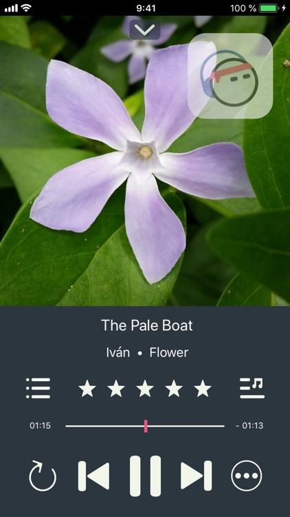 Next Song Music Player screenshot-4
