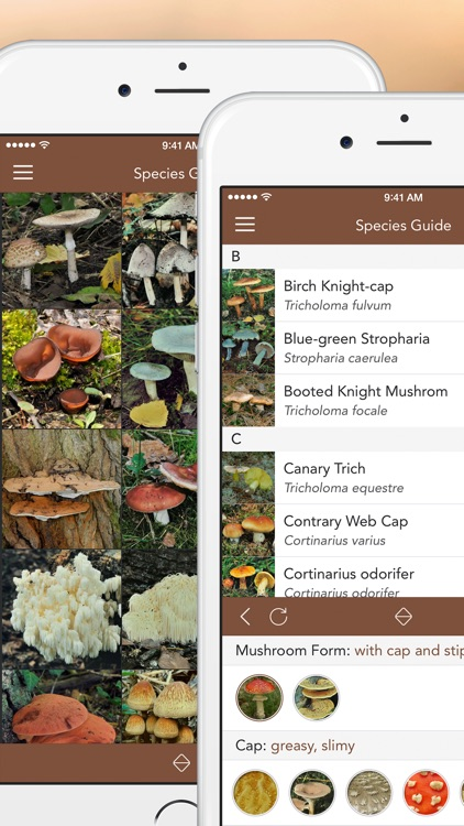 Mushroom LITE - Field Guide screenshot-1