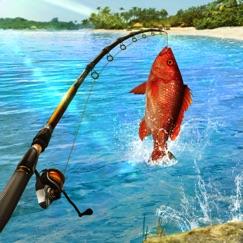 Fishing Clash: Рыбалка Игра Особенности применения