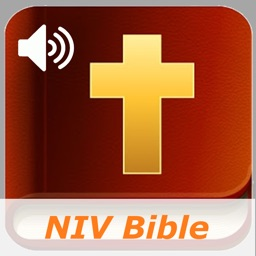 New International Bible Audio