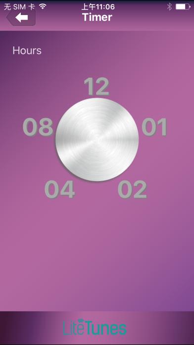Lite Tunes screenshot three