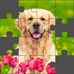 Puzzle World - Jigsaw Puzzles