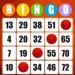 Absolute Bingo! Play Fun Games Hack Online Generator