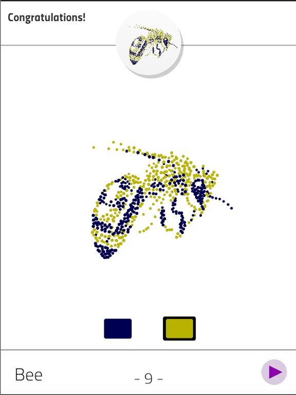 Anamorph screenshot 7