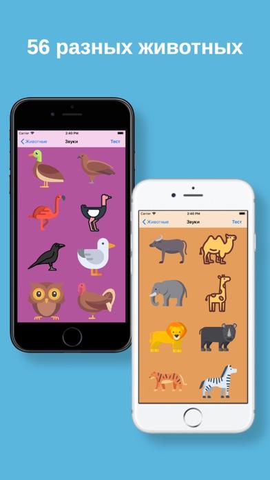 Screenshot of Мир животных! App
