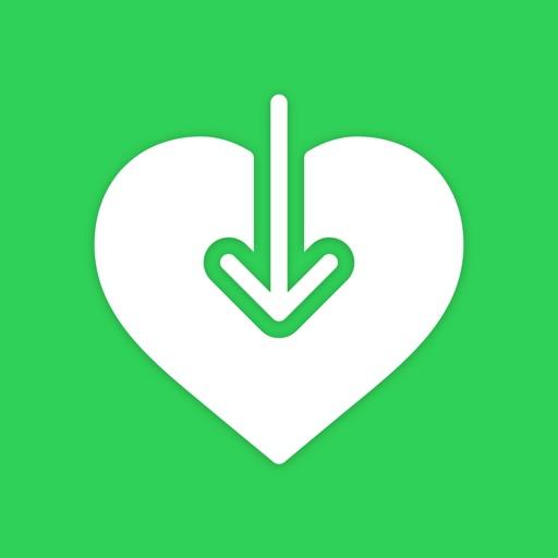 Health Export CSV icon