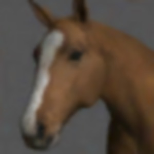 Horse Pose Tool App Analyse et Critique - Entertainment