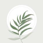 Blossom: Определитель растений на пк