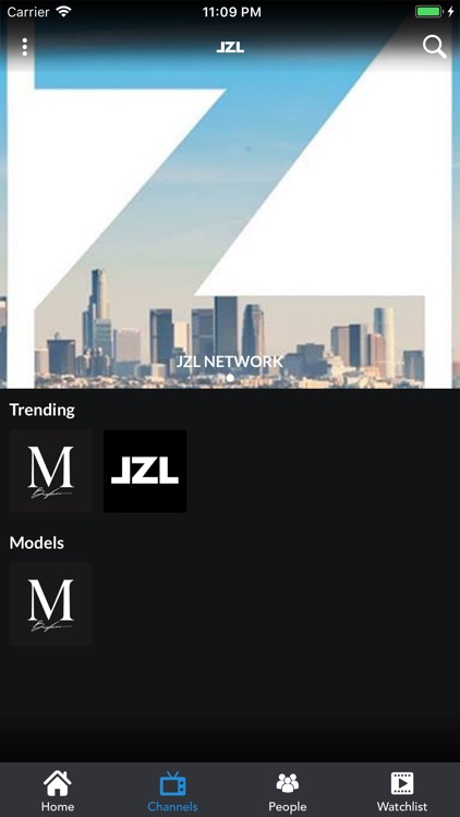 JZL screenshot-4
