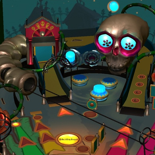 Pinball Frenzy 3D