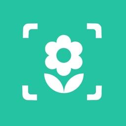 iplant - Plant Identification