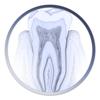 Atlas Odontología