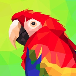 Polygon Art Coloring Games