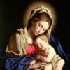 Catholic Daily Reflection