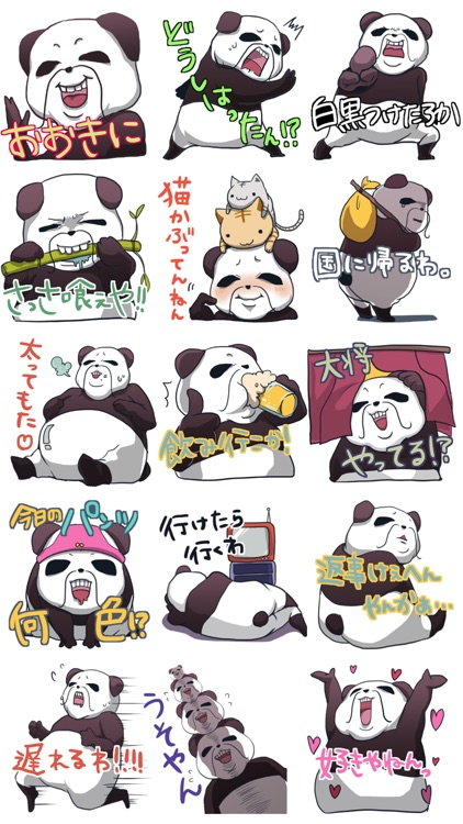 A big Japanese city, Panda who speaks the dialect