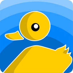 Duck Pond - Gravity Game