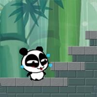 Codes for Jungle Panda Run Hack