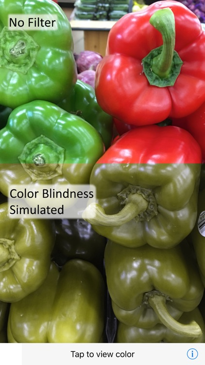 Ccolor - Color Blindness AR Solution