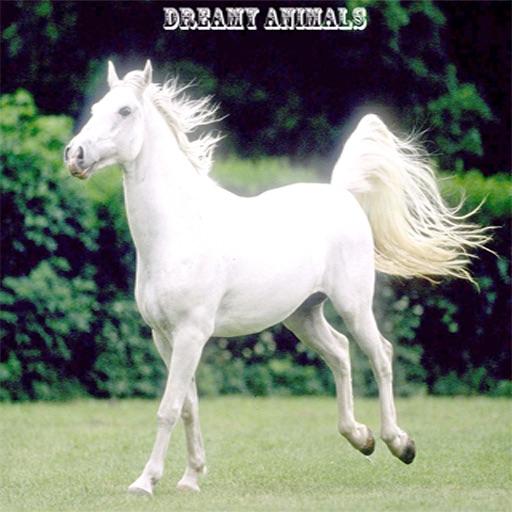 Animals In Dreams