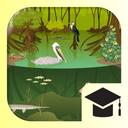 iBiome-Wetland: School Edition