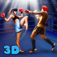 Activities of Kickboxing Fighting Master 3D