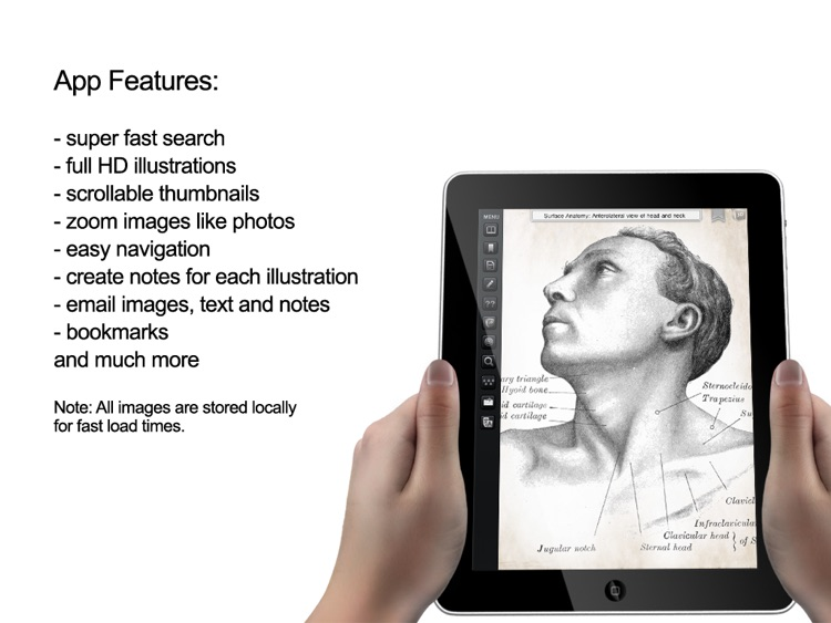 Gray's Anatomy Premium for iPad screenshot-2