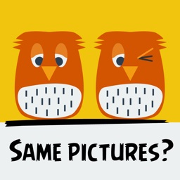 Same Pictures?