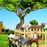 Codes for Learning Animal Names for Kids Hack