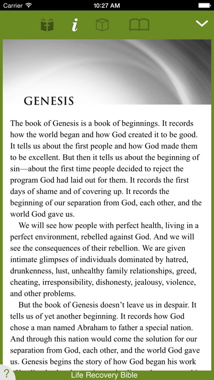 Life Recovery Bible screenshot-1
