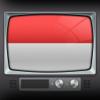 Televisi di Indonesia iPad