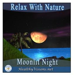 Moonlit Night for iPad