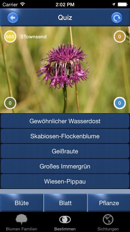 Blumen Id Automatik heimische Wildblumen bestimmen screenshot-4