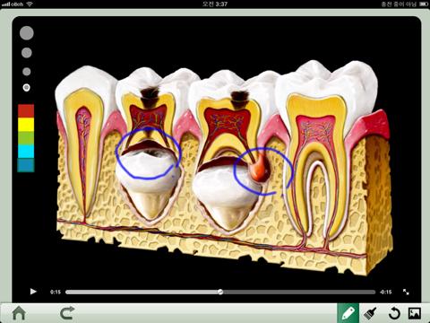 Dental iClinic - náhled