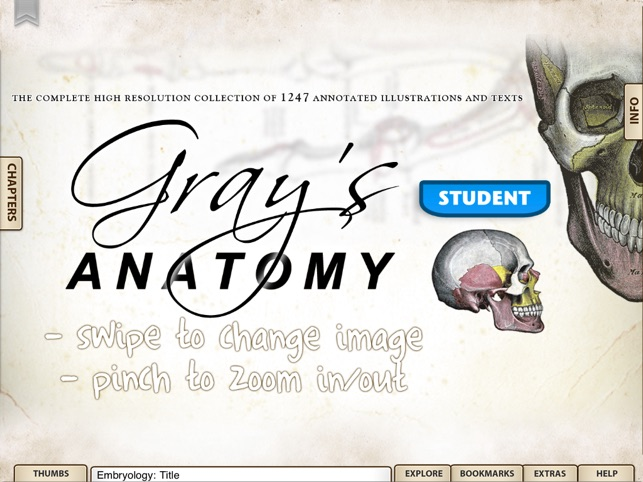 Grays anatomy student