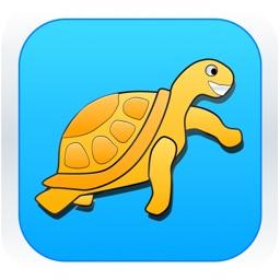 Easy Swimmer - Sea Turtle