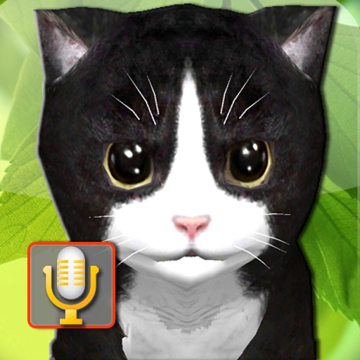 Talking Kittens, cats that can talk and repeat