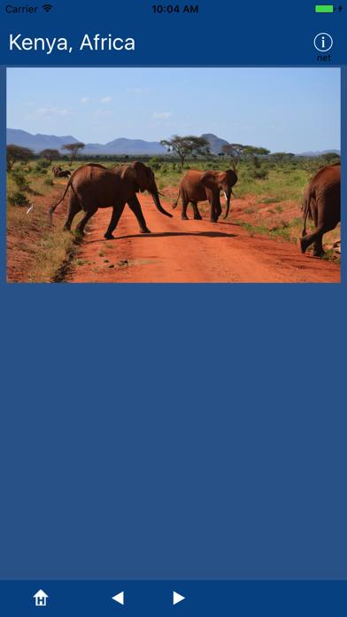 Kenya, Africa screenshot 4