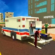 Activities of Realistic Ambulance 2017