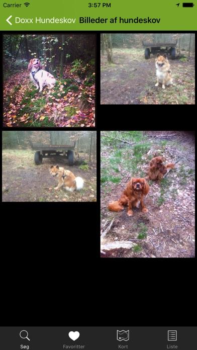 Screenshot for Hundeskove i Danmark - hundeskovene.dk in Denmark App Store