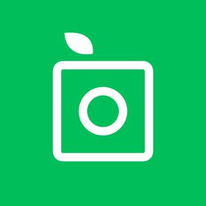 PlantSnap - Identify plants in a snap app