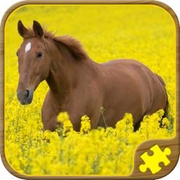 Horse Jigsaw Puzzles - Brain Training Games