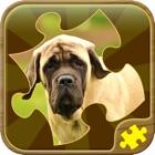Jogos de Puzzle de Cães icon