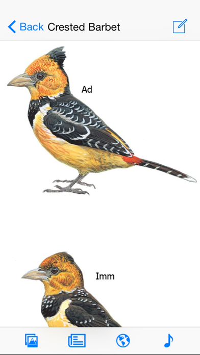eGuide to Birds of East Africaのおすすめ画像4