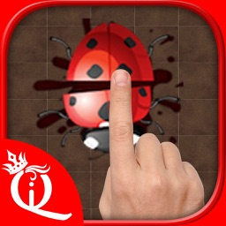 Insects Smasher