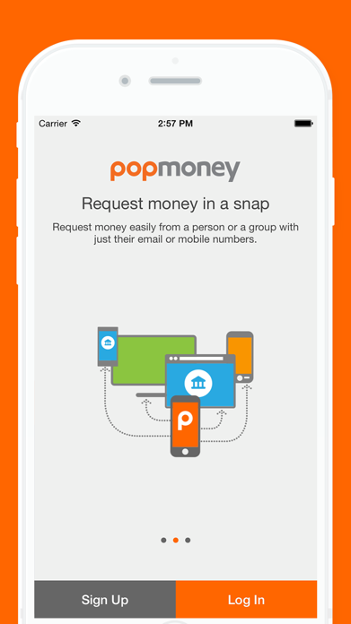 Popmoney Screenshot
