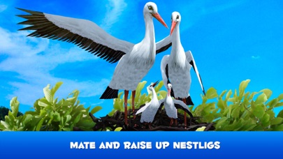 Flying Stork Simulator: Bird Life 3D screenshot three