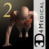 iMuscle 2