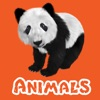 Animals & Animal Sounds Kids Toddlers Zoo App