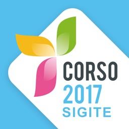 Corso SIGITE • Palermo 2017