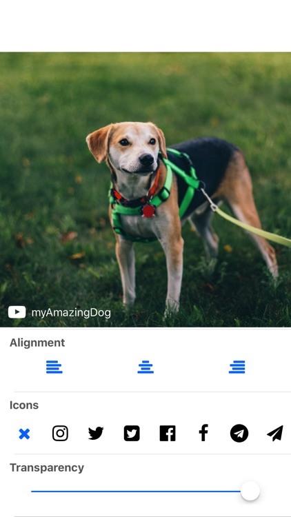 WM : Add Watermark to Your Photos